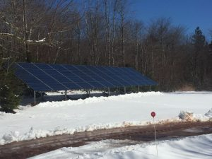 Trivers solar panels - 48 on ground - Trivers