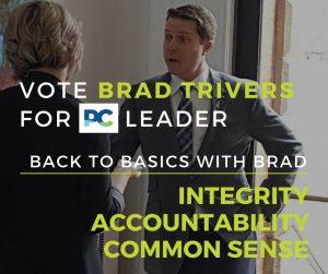 BACK TO BASICS - Brad Trivers - Interview