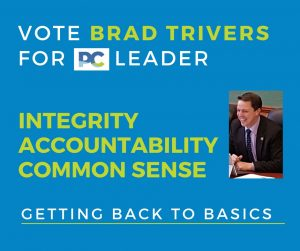 GETTING BACK TO BASICS - Vote for Brad Trivers