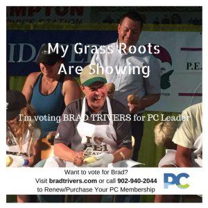 Brad Trivers - My Grass Roots Are Showing final 2