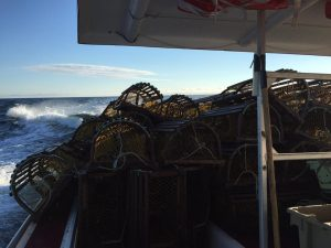lobster traps - Joey Gauthier - landing day 2017 - Brad Trivers